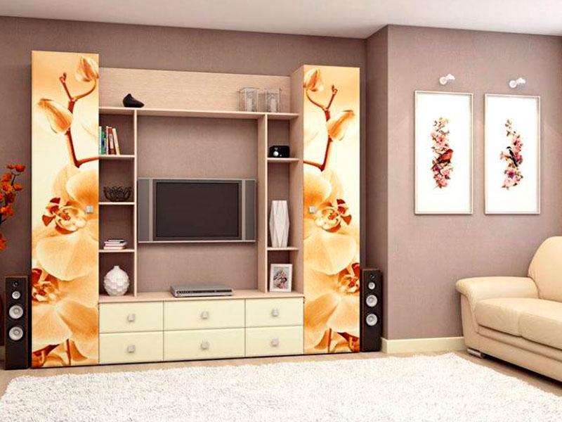 мебельная стенка с фотопечатью